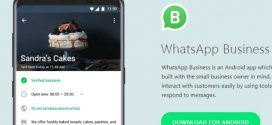 WhatsApp Business ya está disponible para descargar en Google Play México